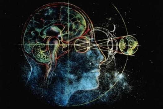 D.Kriukov-brain-universe