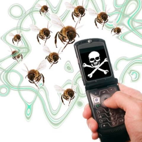 bees-mobphone