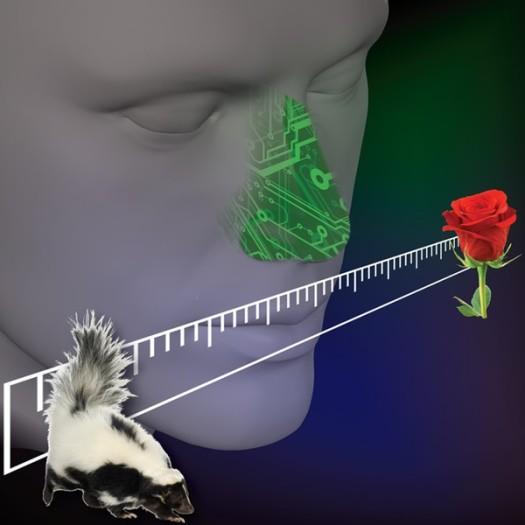 Electronic_Nose