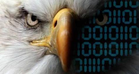 QoB-eagle
