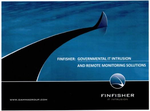 Gamma-FinFisher