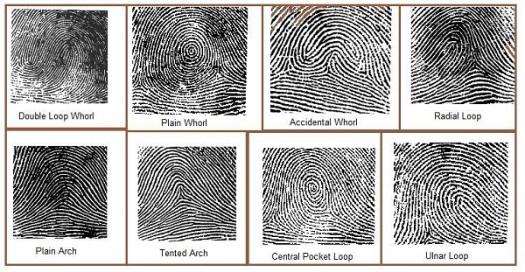 3-fingerprint-types