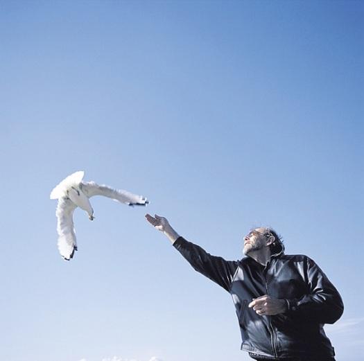 4-bach-seagull